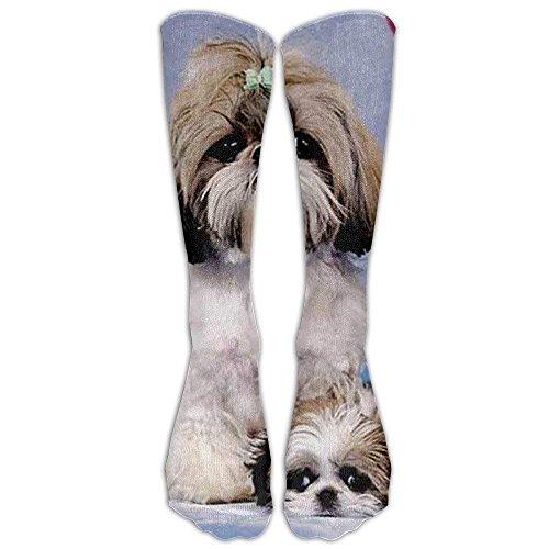 jiilwkie Shih Tzu Knee High Graduated Compression Socks for Women and Men - Best Medical, Nursing, Travel & Flight Socks - Running & Fitness -