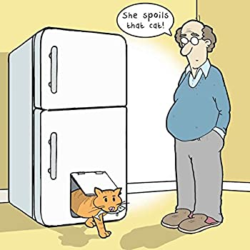 Twizler Carte Humoristique Avec Spoilt Cat Carte Vierge Carte
