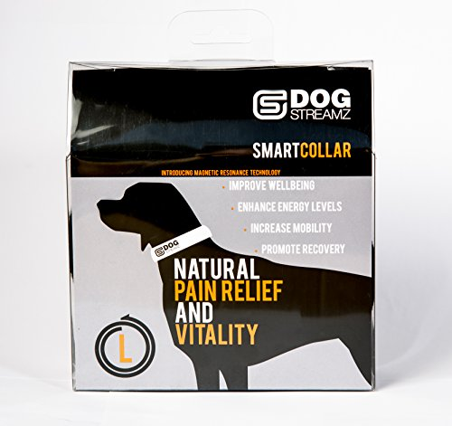 DOGStreamZ-Canine-Smart-Collar-Large