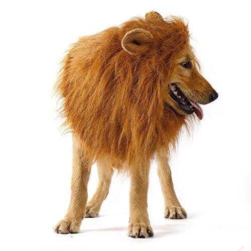 e-jiaen Hund Perücke Löwe Mähne für (Hund Löwen Kostüm)