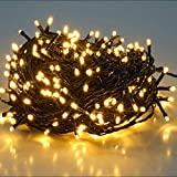 Best de Navidad - SALCAR 25,7m 360 Leds Cadena de Luces IP44 Review