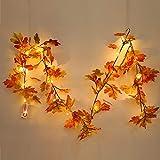 StageOnline Herbst-Girlande mit Lichtern, 1.8m Künstliche Ahornblätter rot, Ahorn, Rebe, Efeu, Laub-Deko zum Aufhängen für Herbst und Thanksgiving