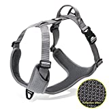 Best Front Range No-pull Dog Harnesses - Pettom Dog Harness Front Range No-Pull Pet Harness Review