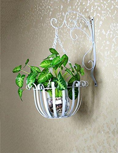 Europea del ferro di stile a parete Flower Pot rack