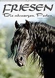 Friesen - die schwarzen Perlen (Wandkalender 2019 DIN A2 hoch): Friesen - besonders schöne, herrlich lackschwarze Pferde (Monatskalender, 14 Seiten ) (CALVENDO Tiere)