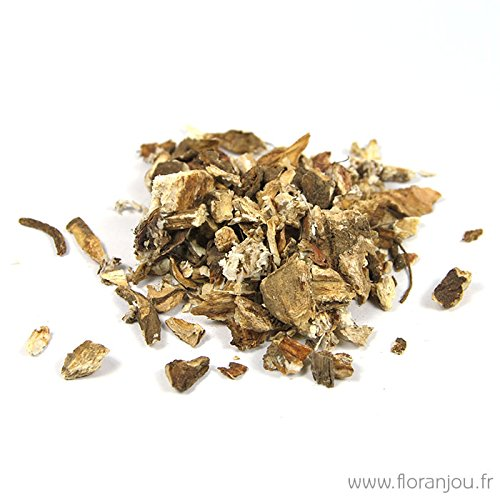 floranjou-bardane-racine-bio-sachet-floranjou-80-g-nom-botanique-arctium-majus