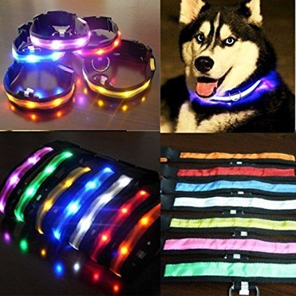 LED Visio Hunde und Katzen Leuchthalsband in 4-Farbes and 4 Farbe - 6