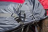 TETON Sports Rucksack Hiker 3700, Rot, 83 x 39 x 31 cm, 60 Liter, 54010056 - 11