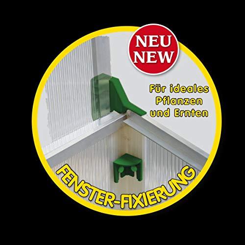 Juwel Frühbeet Easy Fix 100/60 (rasch aufgebaut, UV-beständige Hohlkammerplatten, 100 x 60 x 40 cm), transparent