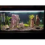 Aquarium Rock Fish Tank Decoration Slate 100% Natural Ideal For Caves WOOD STONE 10kg Set 13