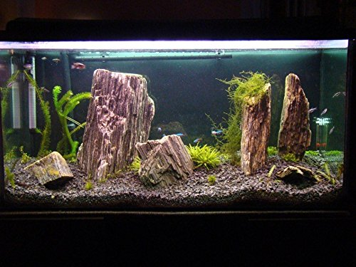 Aquarium Rock Fish Tank Decoration Slate 100% Natural Ideal For Caves WOOD STONE 10kg Set 5