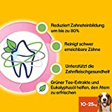 Pedigree DentaStix Fresh Hundesnack für mittelgroße Hunde (10-25kg), Zahnpflege-Snack mit Eukalyptusöl und Grüner Tee-Extrakt, 4 Packungen je 28 Stück (4 x 720 g) - 4