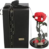 ZY&DD La Bella y la Bestia Rose, Flores para Siempre, Rosas Frescas, Rosas