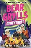A Bear Grylls Adventure 11: The Arctic Challenge