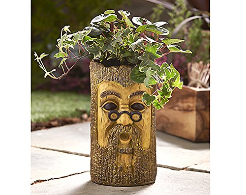 tree-trunk-design-garden-planter-wood-indoor-or-outdoor