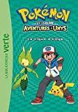 Telecharger Livres Pokemon 10 La Ligue d Unys (PDF,EPUB,MOBI) gratuits en Francaise