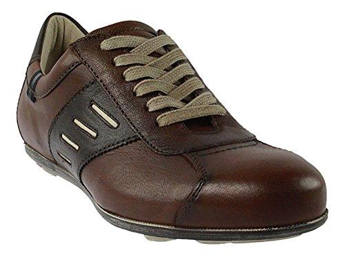 LLoyd Sneaker   Annikan - braun   cigar Braun