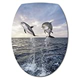 Art déco Stickers - Sticker WC Abattant de WC Dauphins - 035