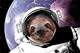 empireposter - Faultier Sloth - In Space - Größe (cm), ca. 91,5x61 - Poster, NEU -