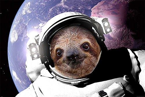 faultier poster empireposter - Faultier Sloth - In Space - Größe (cm), ca. 91,5x61 - Poster, NEU -