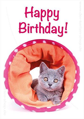 """DIN A6 Glückwunschkarte, Postkarte, Grußkarte, Geburtstagskarte, Katzenbaby in Katzentunnel, \"""" Happy Birthday\"""" im 3er Set"""