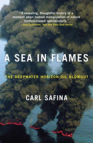 A Sea in Flames: The Deepwater Horizon Oil Blowout (Oil Horizon)