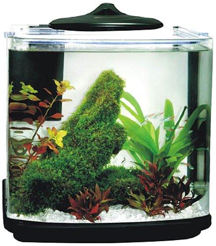 Aquarline CB 20 Bow Fronted Nano Aquarium Kit with LED Light and internal power filter, 320 x 320 x 255 mm