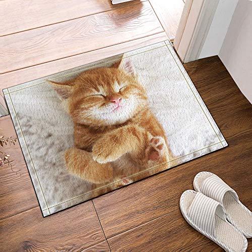 HTSJYJYT Tierdekor. Die schöne Katze ist Schlaf Bad teppiche Rutschfeste fußmatte Boden eingänge außen innen vordere tür Matte Kinder badematte60X40CM Bad zubehör