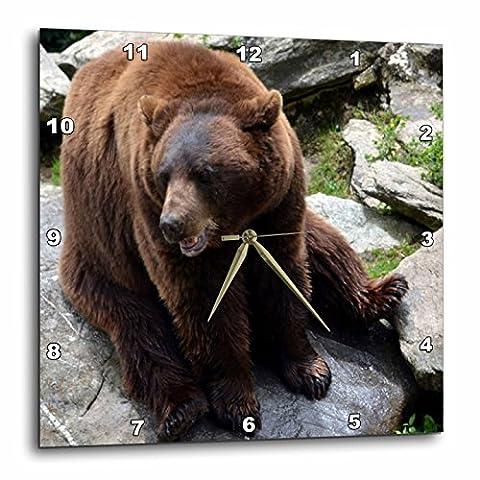 3dRose dpp_24970_1 Brown Bear North Carolina Bear-Wall Clock, 10 by 10-Inch