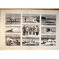 Caccia Eschimese 1879 del Sigillo dell'America della Baia di Hudson di Viaggio di Sport - America Del Sigillo