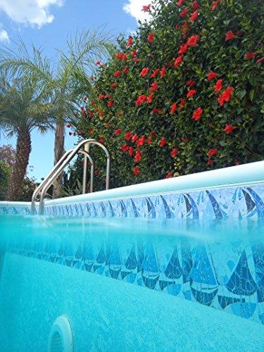 Border Choice Frise décorative de piscine (en lots de 1 m) 150mm Sail Away