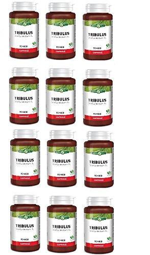 ERBA VITA - TRIBULUS TERRESTRIS 12 CONFEZIONI DA 60 CPS DA 500 MG - azione tonica e di sostegno metabolico - [KIT CON SAPONETTA NATURALE QUIZEN IN OMAGGIO]