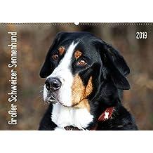 Großer Schweizer Sennenhund (Wandkalender 2019 DIN A2 quer): Sennenhund Rasse (Monatskalender, 14 Seiten ) (CALVENDO Tiere)