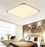 SAILUN 12W Warmweiß Ultraslim LED Deckenleuchte Modern Deckenlampe Flur Wohnzimmer Lampe Schlafzimmer Küche Energie Sparen Licht Wandleuchte Farbe Silber Vergleich