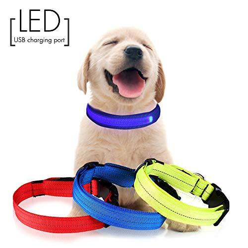 Jinzhao Collar Perro-LED Collar de Perro con luz Recargable USB, 3 Hilos...