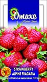 Strawberry Fruit 30 Seeds Pack (Omaxe Brand)