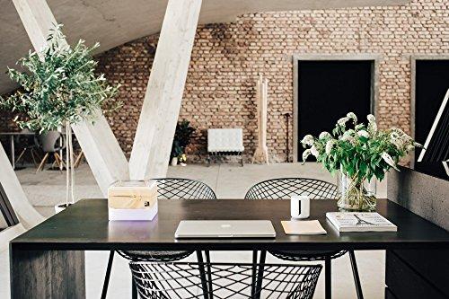 ZirbenLüfter CUBE mini cristall, natürlicher Luftbefeuchter / Luftreiniger aus Zirbe / Zirbenholz. – Räume bis 15 m2. (Abdeckung glasklar mit Blume des Lebens) Für Räume bis 15 m2 - 6