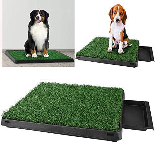 Befied Lettiera Trainer WC Mini Lavabile Erba Sintetica per Cuccioli Cane Gatto Animali Domestici Antibatterico ed antiodore 63 x 50 x 7CM
