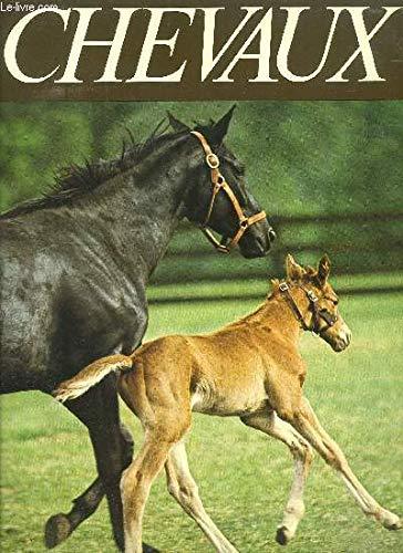 Aimer les chevaux par Caroline Silver