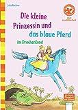 Die kleine Prinzessin und das blaue Pferd im Drachenland: Der Bücherbär: Mein LeseBilderbuch