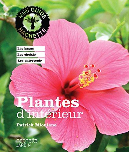 plantes-dinterieur