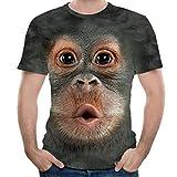 Routinfly Männer Frühling Sommer 3D Print Oansatz Kurzarm, T Shirt Tops Bluse 4D Gedruckt Tier AFFE T-Shirt Kurzarm Lustige Design Casual Tops Tees Männlichen