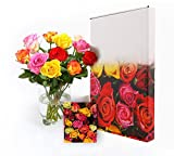 Blumen-strauß mit 12 frische bunte Rosen und Grußkarte- ein einzigartiges
