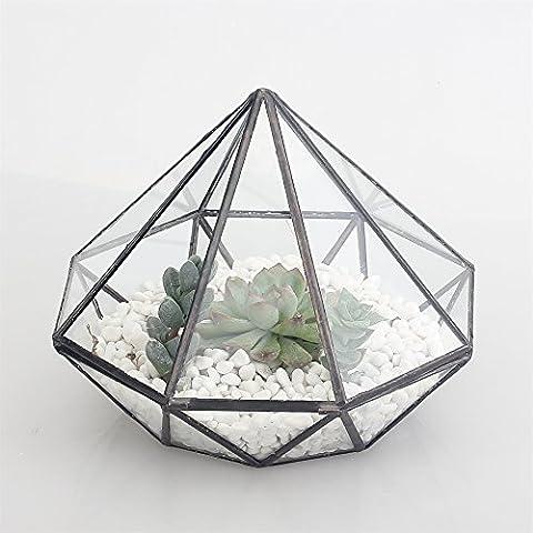 Superficie superiore in vetro per piante succulente, motivo terrari terrario per rettili, con insetti especial per coltivare muschio 14 cm, altezza: 16