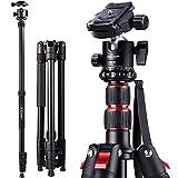 K&F Concept S210 200cm Trípode Completo para Cámara Reflex con Monopie, Pies de Goma Antideslizantes, Puntas de Metal Pica, Cuerda para Muñeca y Rótula de Bola 360 Grados para Canon Nikon Sony Olympus