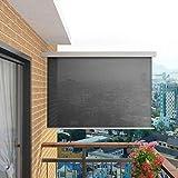 tidyard Auvent Latéral de Balcon/Jardin/Tendresse Multifonctionnel Rétractable Protection UV Gris 180 x 200 cm