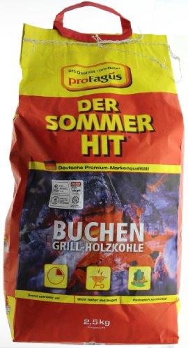Profagus Buchen Grill Holzkohle 25kg