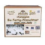 Bio Fertig-Pilzzuchtset Champignon