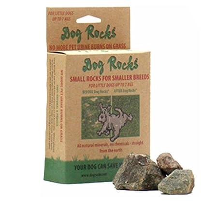 Dog Rocks Urine Patch Preventer 100g Bag 1
