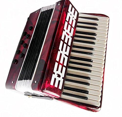 Klein Akkordeon - im Holz und Plastik - Dekorationsgegenstand - Geschenk Musik - In seinem Kästchen geliefert - Höhe 9 cm - Breite 8 cm